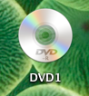 mac_rdp_disk1.png